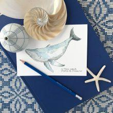 Timothée la baleine